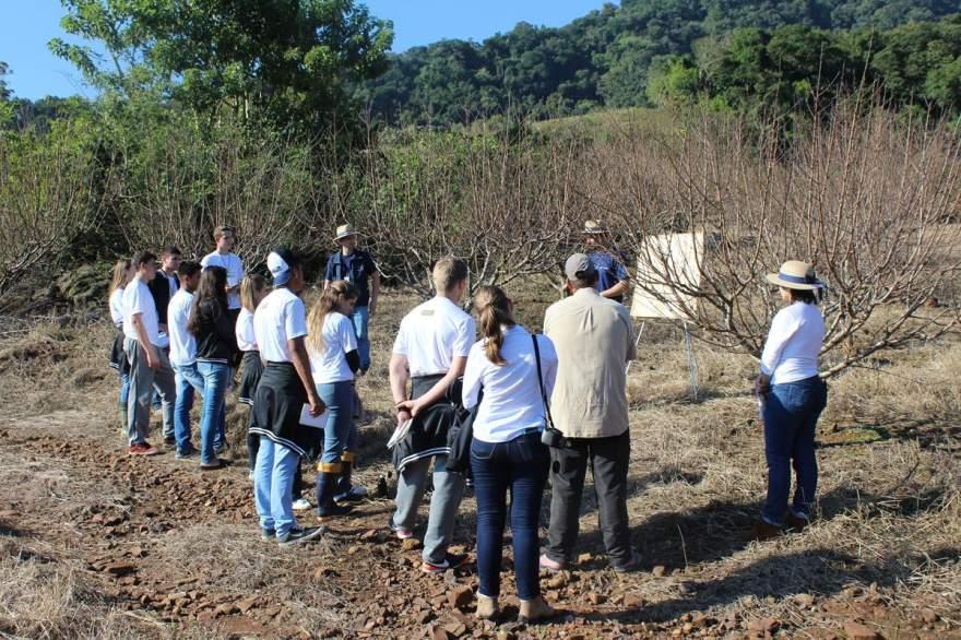 Atividade foi realizada no pomar de Silvio Rehbein na Linha do Rio