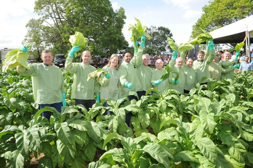 Autoridades simbolizaram abertura usando vestimenta de colheita que confere 98% de proteção dérmica