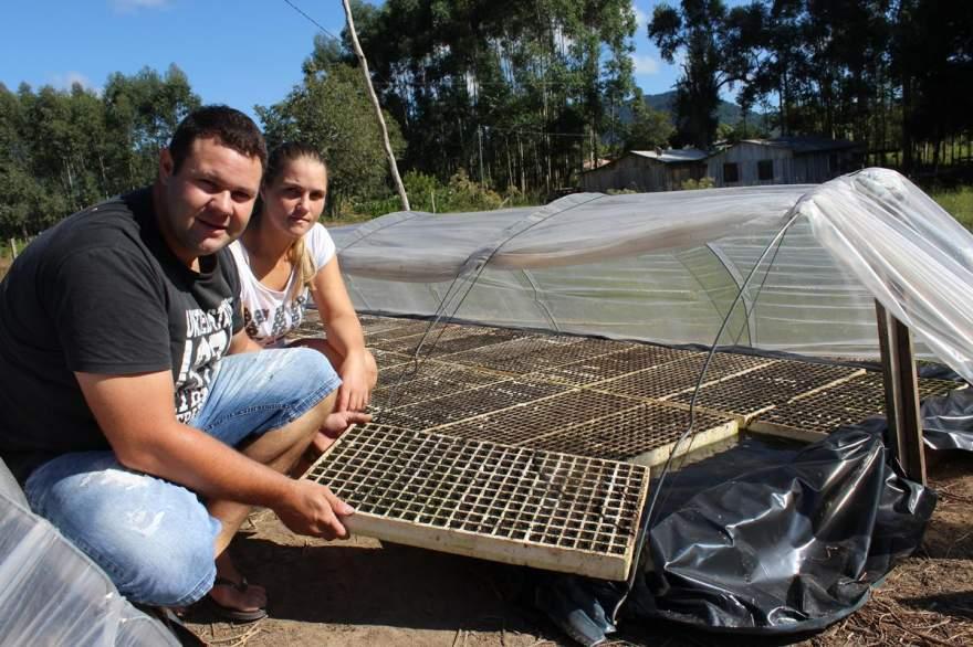 Lucien e Dienifer já realizaram a semeadura de tabaco nos canteiros. Produtor pretende realizar o transplante para a lavoura a partir de 15 de junho