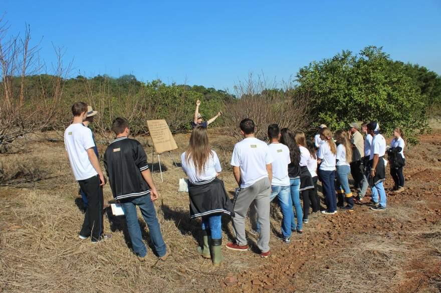Estudantes acompanham a aula prática com atenção
