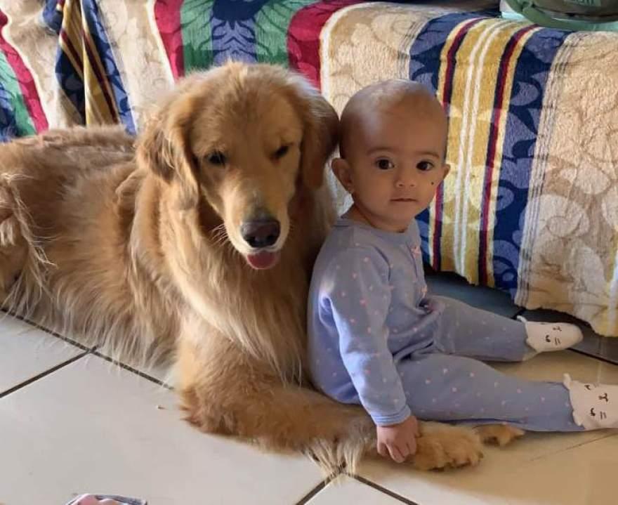 Na foto, minha neta Ana Julia com a Maia
