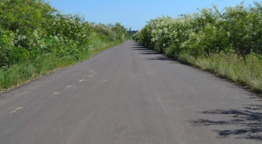 Novo asfalto ainda não possui sinalização na pista e vegetação das margens em alguns pontos está invadindo a estrada por falta de manutenção