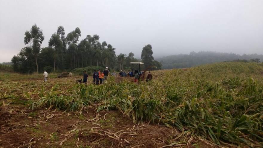 Acidente ocorreu no final da tarde em lavoura de milho na Linha Alta - Crédito: Arzélio Strassburger - Bombeiros Voluntários