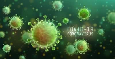 Covid-19: boletim registra sete novos casos