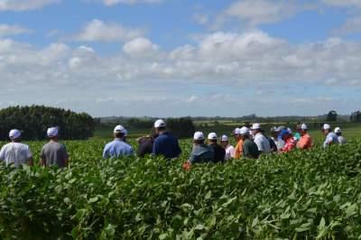 Produtores puderam conhecer novas cultivares de soja durante o dia de campo