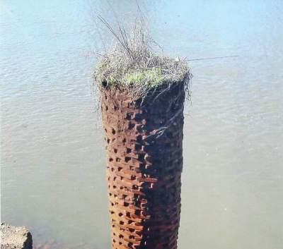 Folha foi em busca de respostas sobre a origem dos pilares, mas respostas se multiplicaram e confundiram