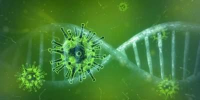 Candelária contabiliza quatro novos casos de covid-19 nesta quinta