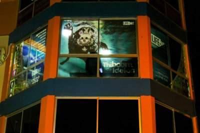 Empresa candelariense lança campanha em prol da sustentabilidade