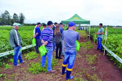 Produtores foram conferir as novidades em novas tecnologias durante o dia de campo promovido pela Sollus Agrícola
