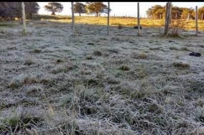Frio retorna ao Estado a partir desta segunda-feira