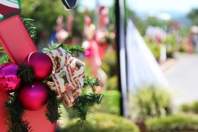 Ornamentação na cidade antecipa o clima natalino