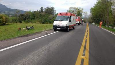 Veículo colidiu em mureta e atravessou a rodovia